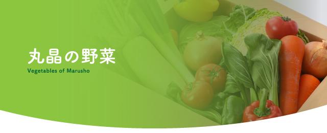 丸晶の野菜